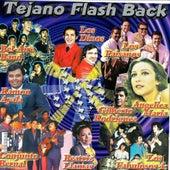 Tejano Flash Back von Various Artists