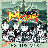 Popurri Exitos Mix by Banda Maguey