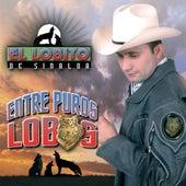 Entre Puros Lobos by El Lobito De Sinaloa