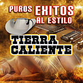 Puros Exitos Al Estilo Tierra Caliente by Various Artists