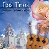 Eternamente Enamorados by Los Trios