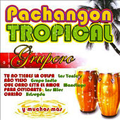 Pachangon Tropical Grupero by Various Artists