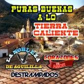 Puras Buenas A Lo Tierra Caliente by Various Artists