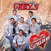 Siguiendo Al Corazon by Los Grey's