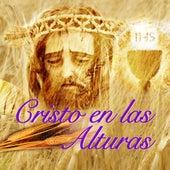 Cristo En Las Alturas by Los Llayras