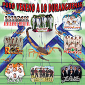 Puro Veneno A Lo Duranguense by Various Artists
