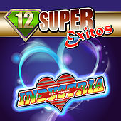12 Super Exitos by Industria Del Amor