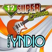 12 Super Exitos by Grupo Yndio