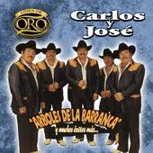 Arboles De La Barranca Y Muchos Exitos Mas by Carlos Y Jose
