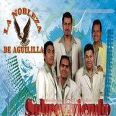Sobreviviendo by La Nobleza De Aguililla