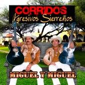 Corridos Agresivos Sierrenos by Miguel Y Miguel