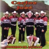 Corridos De Agallas by Carlos Y Jose