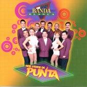 Nos Vamos De Punta by Banda Blanca