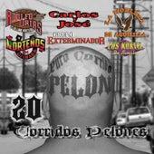 20 Corridos Pelones by Various Artists