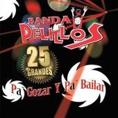 Pa' Gozar Y Pa' Bailar by Banda Pelillos