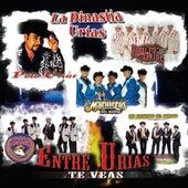 Entre Urias Te Veas by Various Artists