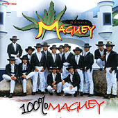 100% Maguey by Banda Maguey