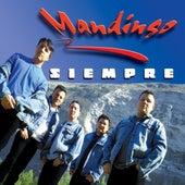 Siempre by Mandingo