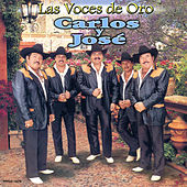 Las Voces De Oro by Carlos Y Jose