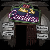 Netas De Cantina by Various Artists