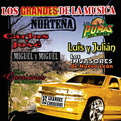 Los Grandes De La Musica Nortena by Various Artists