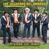 Prenda Del Alma by Los Jilgueros Del Arroyo