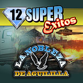 12 Super Exitos by La Nobleza De Aguililla
