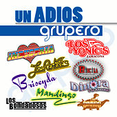 Un Adios Grupero by Various Artists