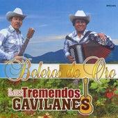 Boleros De Oro by Los Tremendos Gavilanes