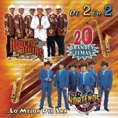 De 2 En 2 - 20 Grandes Temas...Lo Mejor Del Sax by Various Artists