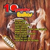 10 Grandes Exitos by Mariachi Juvenil de Mexico