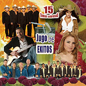 Jugo De Exitos by Various Artists