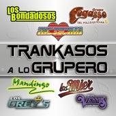 Trankasos A Lo Grupero by Various Artists