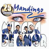 Mirada De Amor by Mandingo