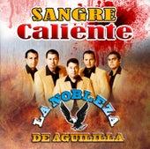 Sangre Caliente by La Nobleza De Aguililla