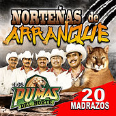 Nortenas De Arranque - 20 Madrazos by Los Pumas Del Norte