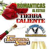 Romanticas Al Estilo Tierra Caliente by Various Artists