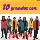 10 Grandes Con Los Grey's by Los Grey's