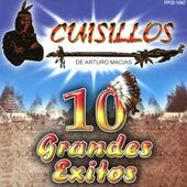 10 Grandes Exitos by Banda Cuisillos