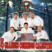 15 Grandes Corridos Calientes by La Nobleza De Aguililla