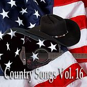 Country Songs Vol. 16 by Various Artists