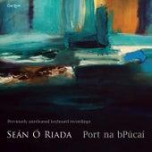 Port Na bPúcaí by Seán Ó Riada