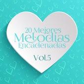 20 Mejores Melodías Encadenadas Vol. 5 von Various Artists