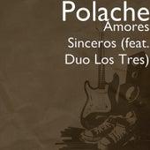 Amores Sinceros by Polache