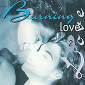 Burning Love 2 von Various Artists