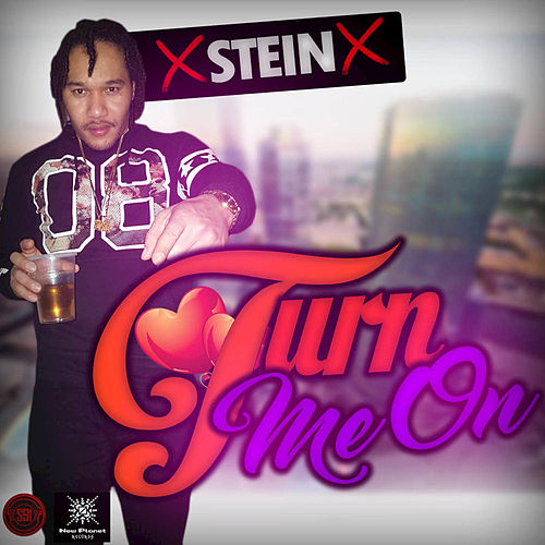 Turn Me On by Stein