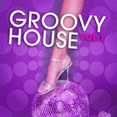 Groovy House, Vol. 1 by Various Artists