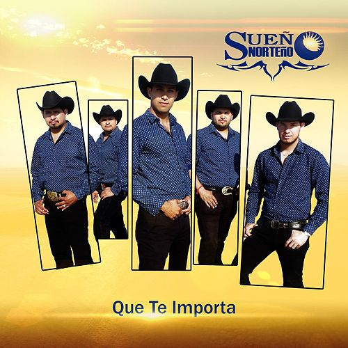 Que Te Importa by Sueño Norteño