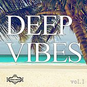 Deep Vibes, Vol. 1 by Various Artists
