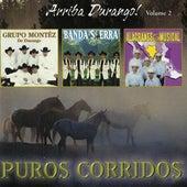 Arriba Durango, Vol. 2 by Various Artists